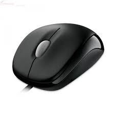 MS COMPACT OPTICAL MOUSE 500 USB